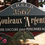 bouleau_argente