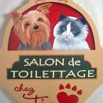 toilettage_ti-coeur_4